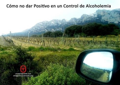 Enoturismo: cómo no dar positivo en control de alcoholemia