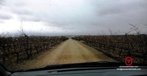 Cómo ofrecer Enoturismo en días de lluvia