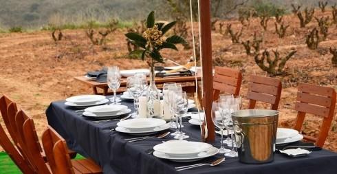Información cenar en viñedo
