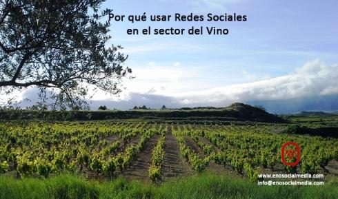 Redes Sociales y vino