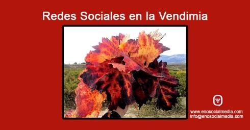 Las Redes Sociales durante la vendimia